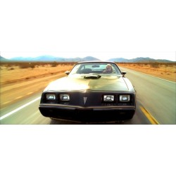 1979 Pontiac Firebird Trans Am   Kill Bill: Vol. 2 (2004)