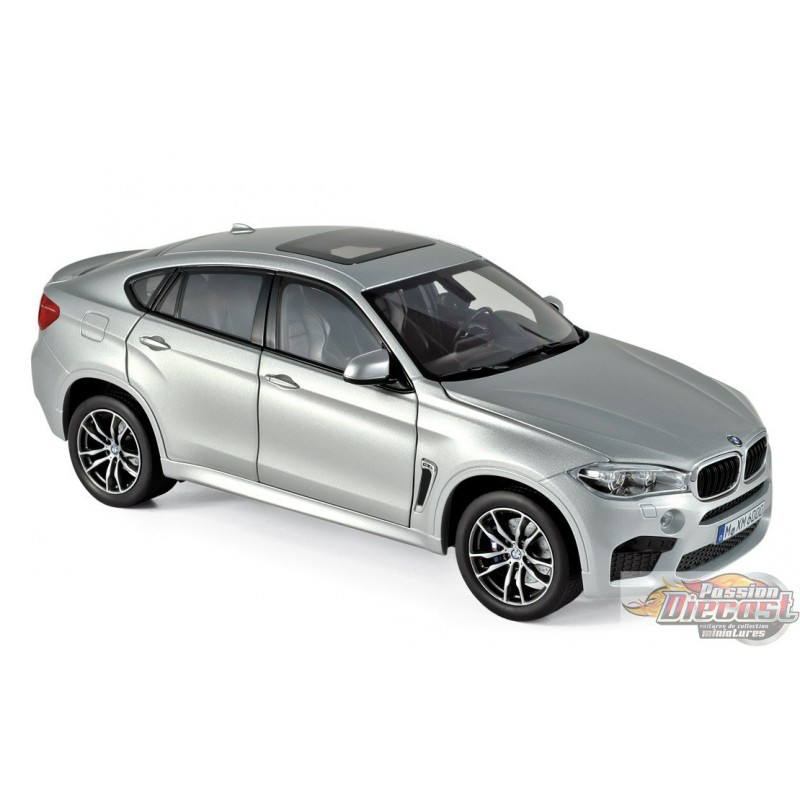Bmw X6 Price In Germany: SILVER 1/18 Norev 183200 Passion Diecast