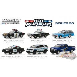 Hot Pursuit série 30 Assortment Greenlight 42870  1-64 Passion Diecast