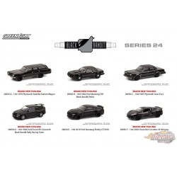 Black Bandit Series 24  Assortment  1-64 greenlight 28050 - Passion Diecast