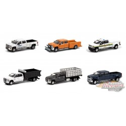 Dually Drivers Series 6 assortment  - 1-64  Greenlight  - 46060 -  Passion Diecast